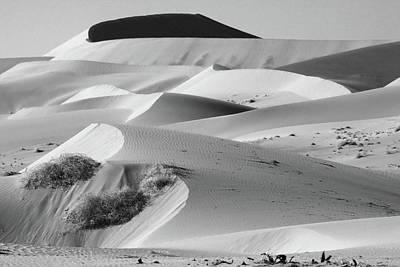 Photograph - Sand Dune Sculptures - Namibia by Aidan Moran