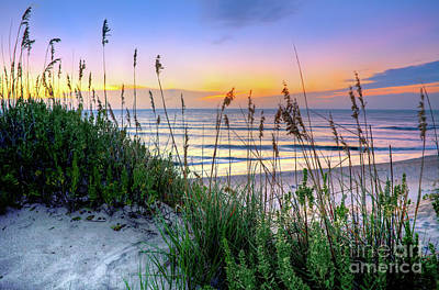 Photograph - Sand Dune Sunrise On The Outer Banks by Dan Carmichael
