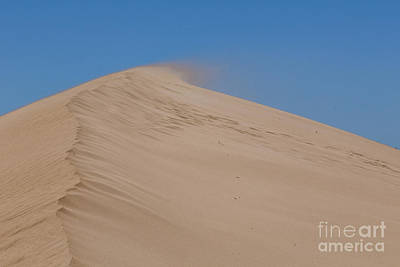 Photograph - Sand Dune by Werner Padarin