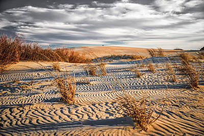 Photograph - Sand Dune Wind Carvings by Donald Brown