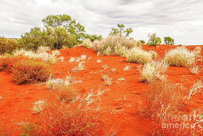 Photograph - Sand Dunes #1 Of The Red Centre - Australia by Lexa Harpell