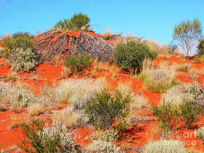 Photograph - Sand Dunes #3 Of The Red Centre - Australia by Lexa Harpell