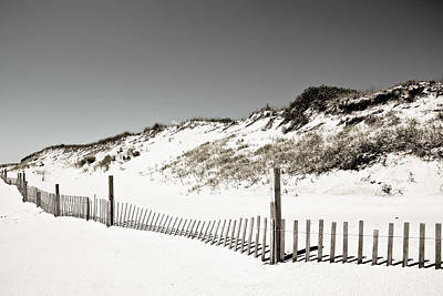 Photograph - Sand Dunes by Colleen Kammerer