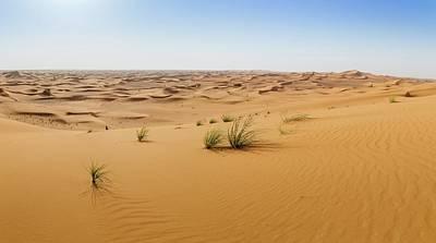 Photograph - Sand Dunes In Sharjah Desert by Alexandre Rotenberg