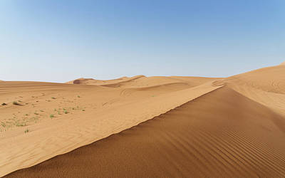 Photograph - Sand Dunes In United Arab Emirates Desert by Alexandre Rotenberg