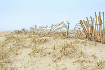 Photograph - Sand Dunes On Chatham Beach by Edward Fielding