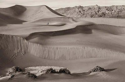 Photograph - Sand Dunes Sepia by Jonathan Nguyen