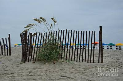 Photograph - Sand Fence Barricade by Bob Sample