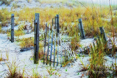 Photograph - Sand Fence by David Arment