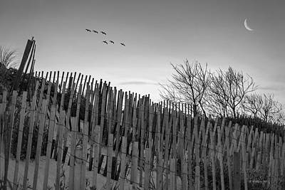 Dune Fences - Grayscale Art Print by Brian Wallace