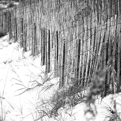 Photograph - Sand Fencing Preventing Beach Erosion Destin Florida Square Format Black And White by Shawn O'Brien