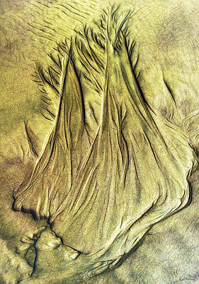 Photograph - Sand Flow by Dee Browning