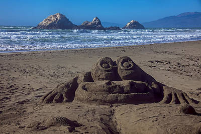 Sand Frog  Art Print by Garry Gay