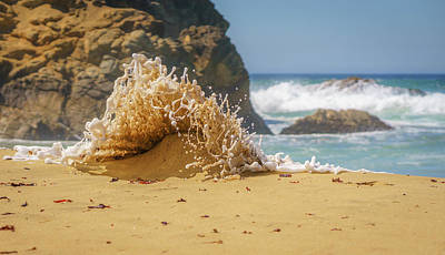 Photograph - Sand Monster by LiveforBlu Gallery