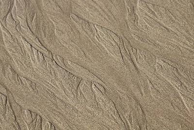 Photograph - Sand Patterns by Living Color Photography Lorraine Lynch