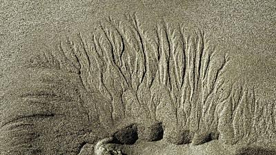 Sand Patterns On The Beach  1 Art Print by Steven Ralser