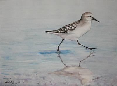 Sand Piper Art Print