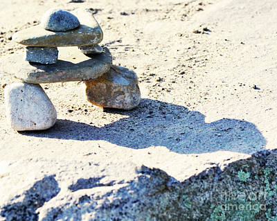 Photograph - Sand Play by Traci Cottingham