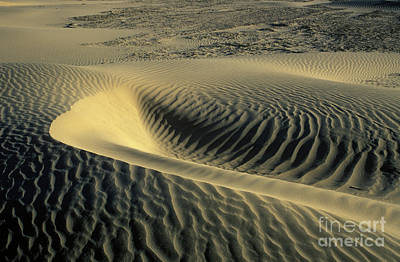 Photograph - Sand Ripples by Jim And Emily Bush