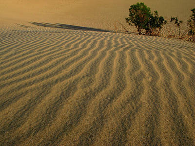 Photograph - Sand Ripples by Inge Riis McDonald
