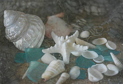Photograph - Sand, Shells, And Sea Glass 9870 by Teresa Wilson