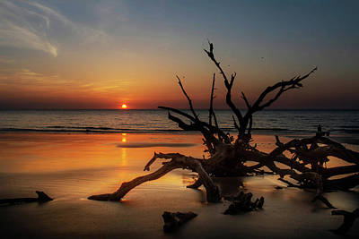 Jekyll Island Photograph - Sand Surf And Driftwood by Chrystal Mimbs