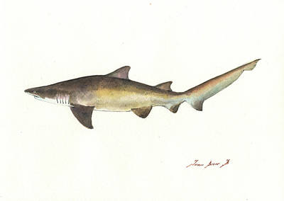 Reef Shark Wall Art - Painting - Sand Tiger Shark by Juan Bosco