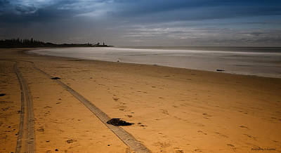 Photograph - Sand Tracks 001 by Kevin Chippindall