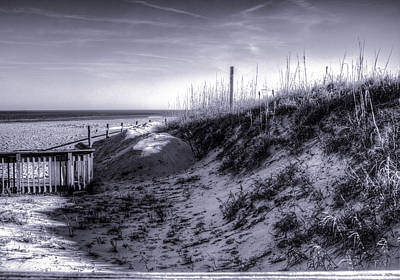 Photograph - Sandbridge Dunes by Pete Federico