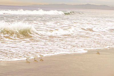 Photograph - Sandelings In Hermosa by Michael Hope