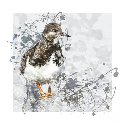 Kunst Mixed Media - Sanderling by Art By Jeronimo
