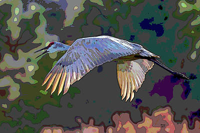 Wood Duck Mixed Media - Sandhill Crane by Charles Shoup