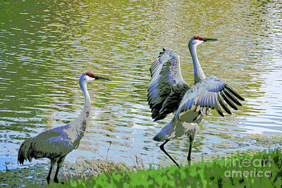 Billiard Balls - Sandhill Cranes Digital Painting by Carol Groenen