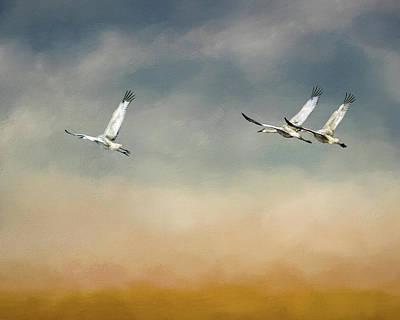 Digital Art - Sandhill Cranes by Erwin Spinner