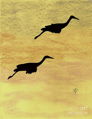 Drawing - Sandhill Cranes In Flight by D Hackett