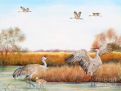 Sandhill Cranes-jp3159 Original