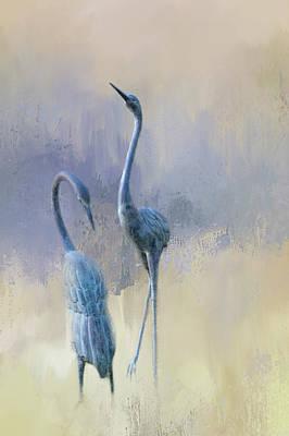 Crane Mixed Media - Sandhill Cranes by Terry Davis