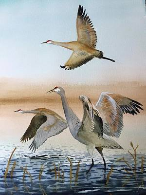Waterfowl Painting - Sandhill Trio by Dennis Fakes