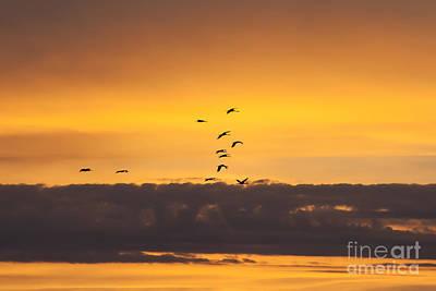 Photograph - Sandhills At Sunset by Scott Wood