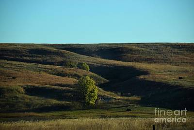 Photograph - Sandhills Hills by Mark McReynolds