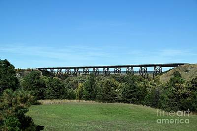 Photograph - Sandhills Railroad Bridge  by Mark McReynolds