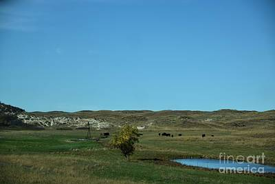Photograph - Sandhills Ranch by Mark McReynolds