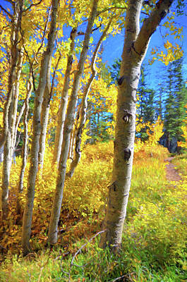 Photograph - Sandia Aspens by Jan Amiss Photography