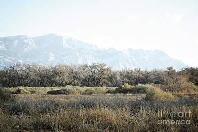 Photograph - Sandia Mountains Bosque Woodland Landscape by Andrea Hazel Ihlefeld