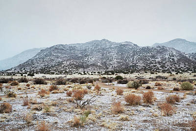 Photograph - Sandia Mountains Foothills Snow by Andrea Hazel Ihlefeld