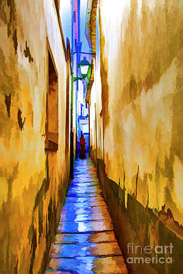 Photograph - Sandiago Walkway by Rick Bragan