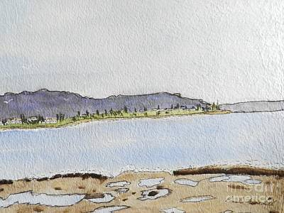 Painting - Sandon Point by Pamela Meredith