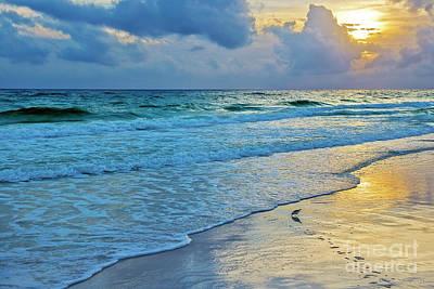 Photograph - Sandpiper At Sundown by David Arment