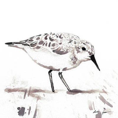 Sandpiper Mixed Media - Sandpiper by Barbara Fowler