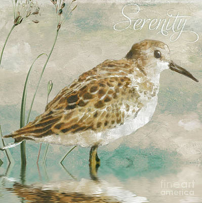 Beach Royalty-Free and Rights-Managed Images - Sandpiper I by Mindy Sommers
